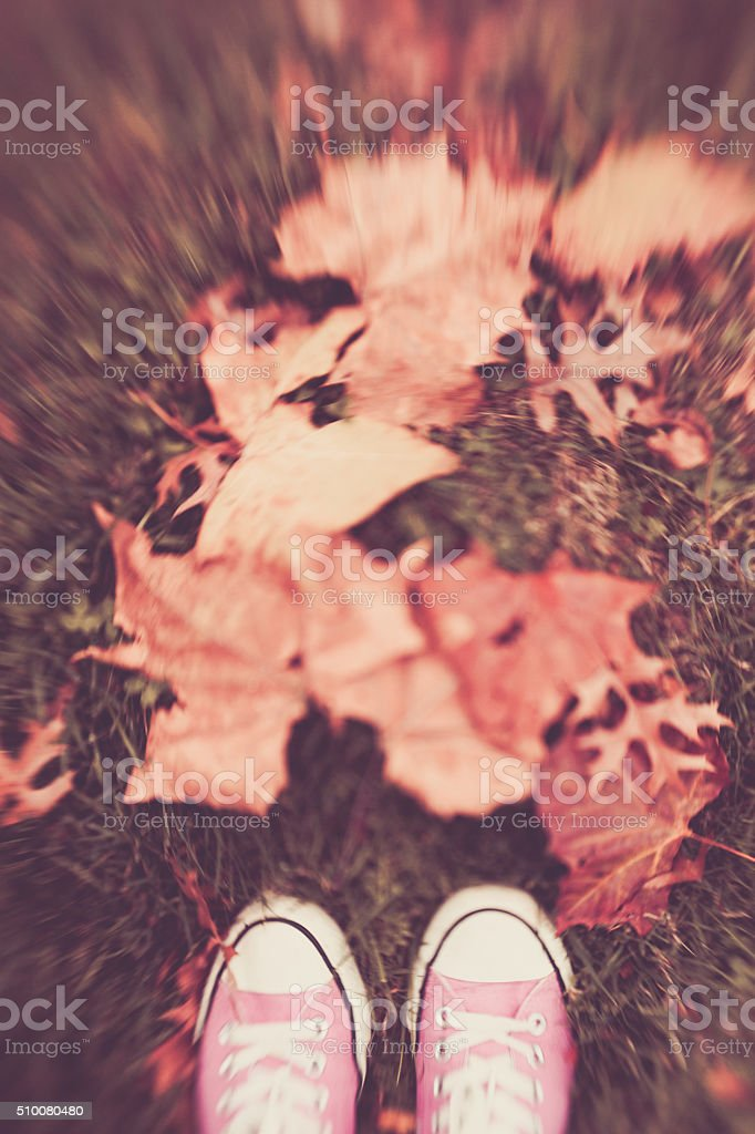 Sneakers in the Leaves stock photo