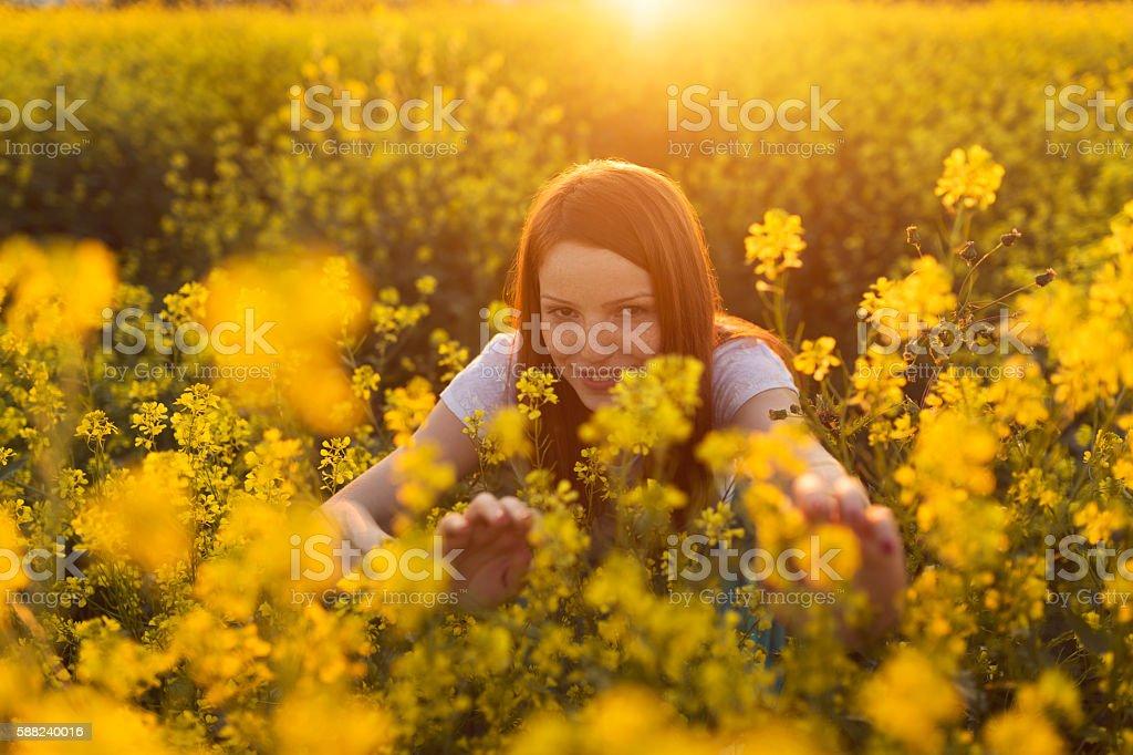 Sneaking through yellow flowers stock photo