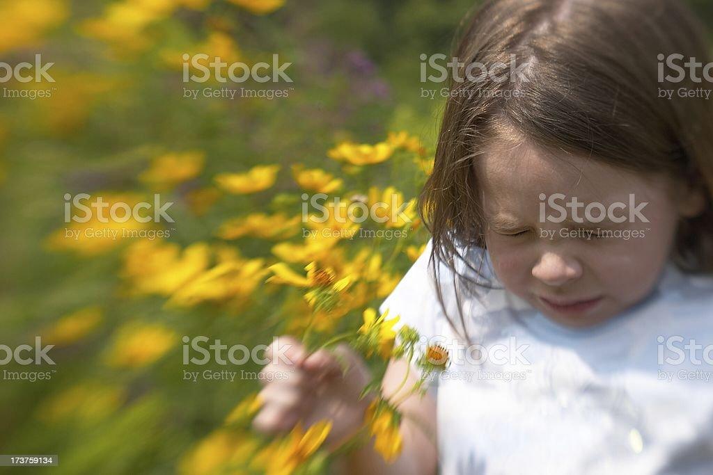 Sneeze II royalty-free stock photo