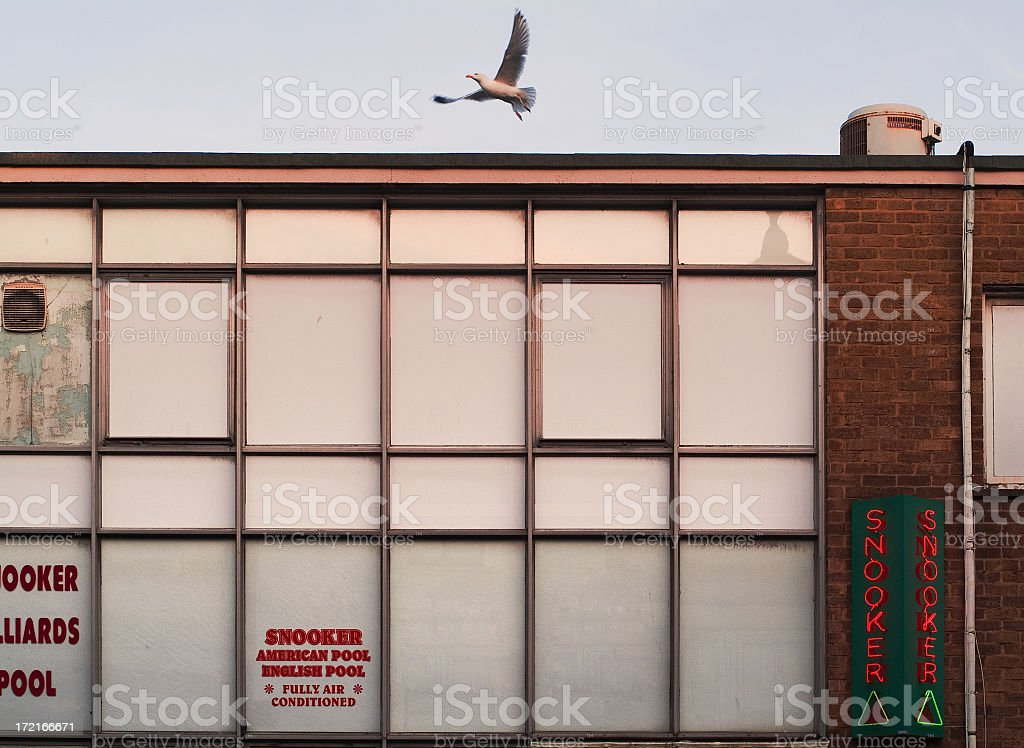 Snooker tables with gull royalty-free stock photo