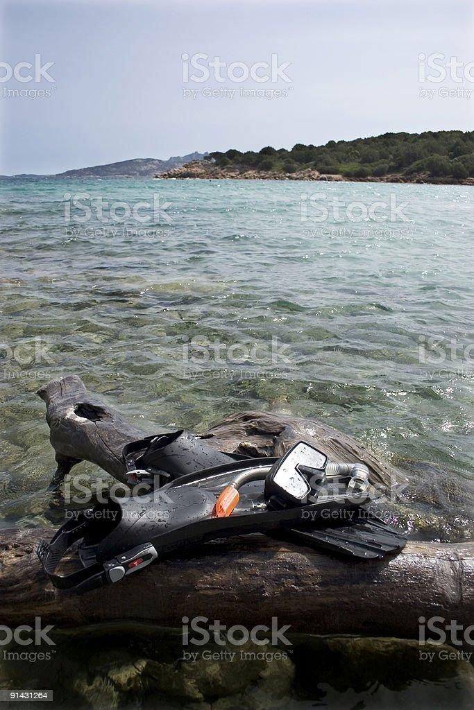 Plongée avec masque et tuba et des palmes 1 photo libre de droits
