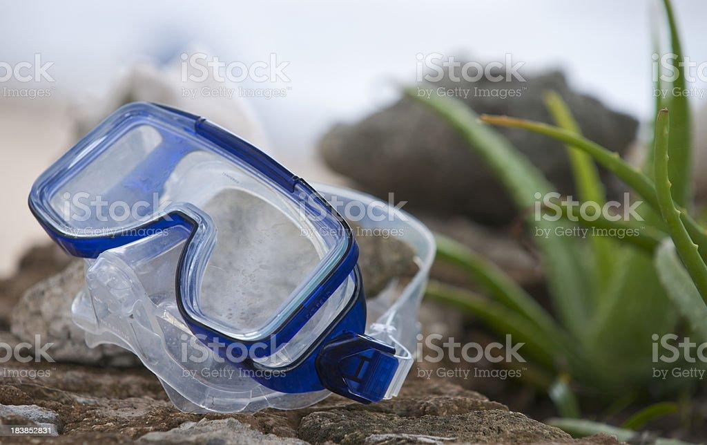 Snorkel Mask Tropical Location Horizontal stock photo