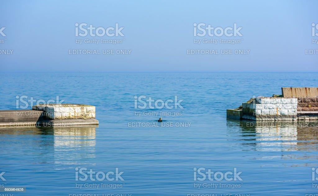 Snorkeler in water between piers stock photo