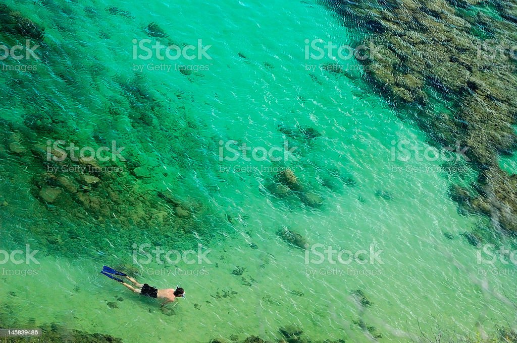 snorkeler swimming over coral reef stock photo