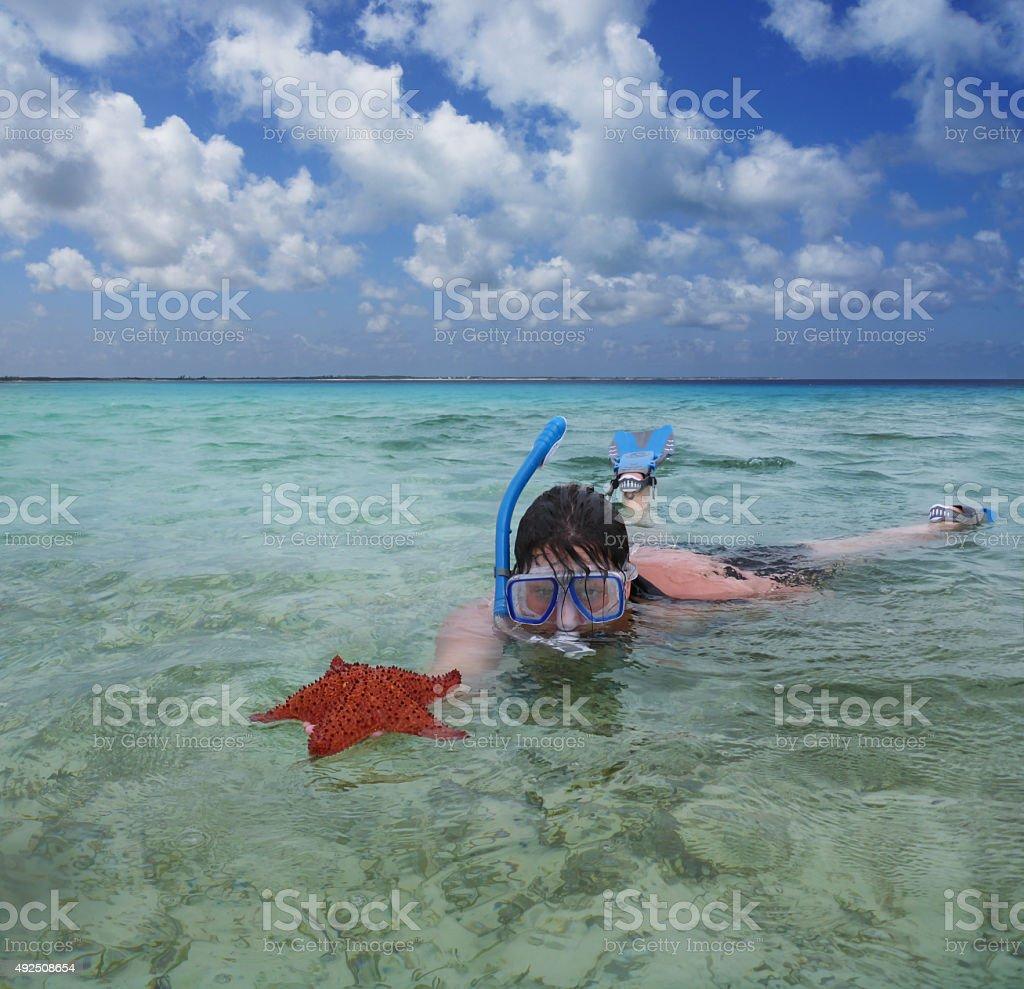 snorkeler with starfish stock photo