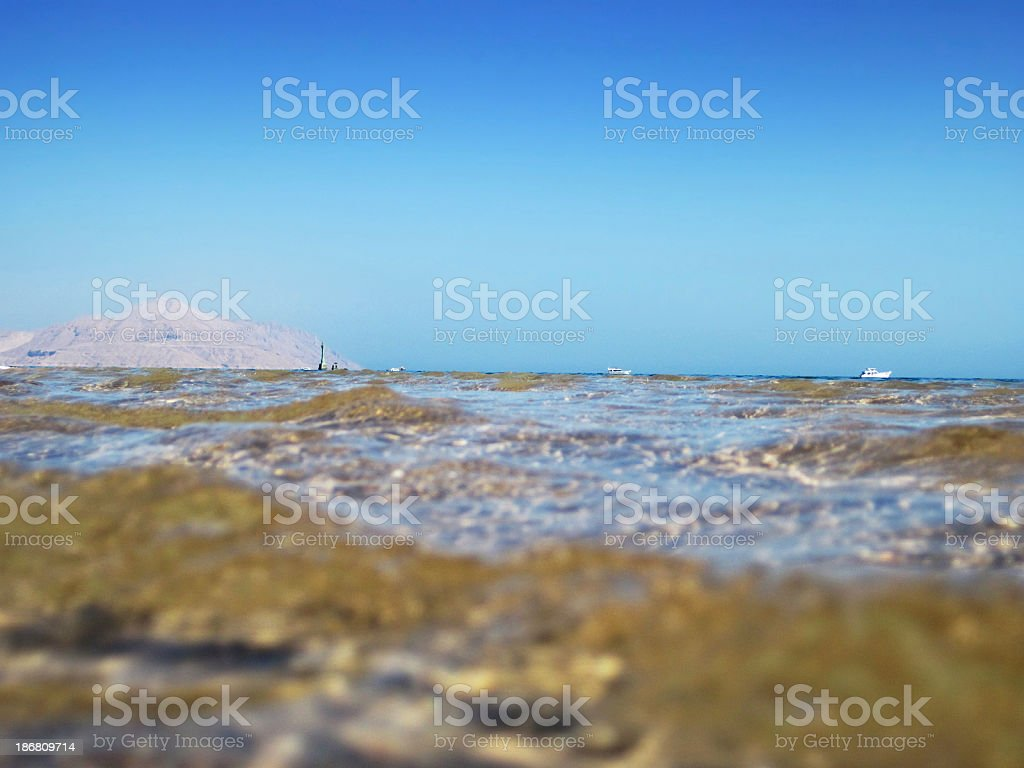 Snorkeler's view over water stock photo