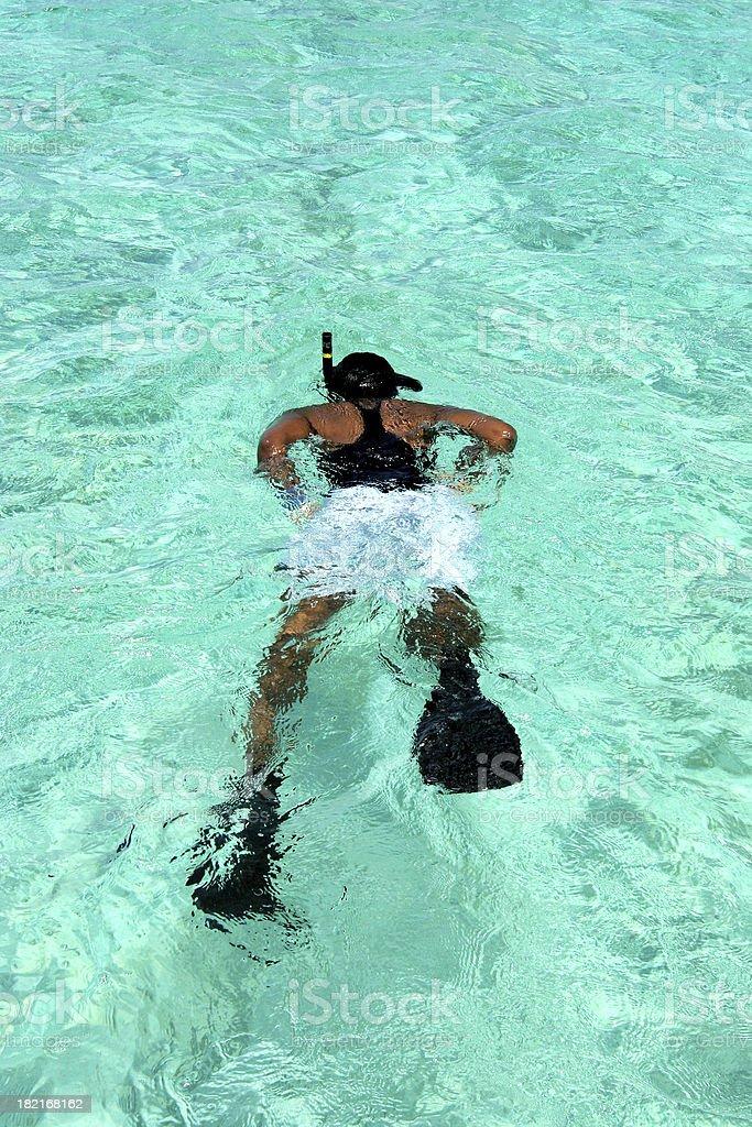Snorkeling 2 royalty-free stock photo