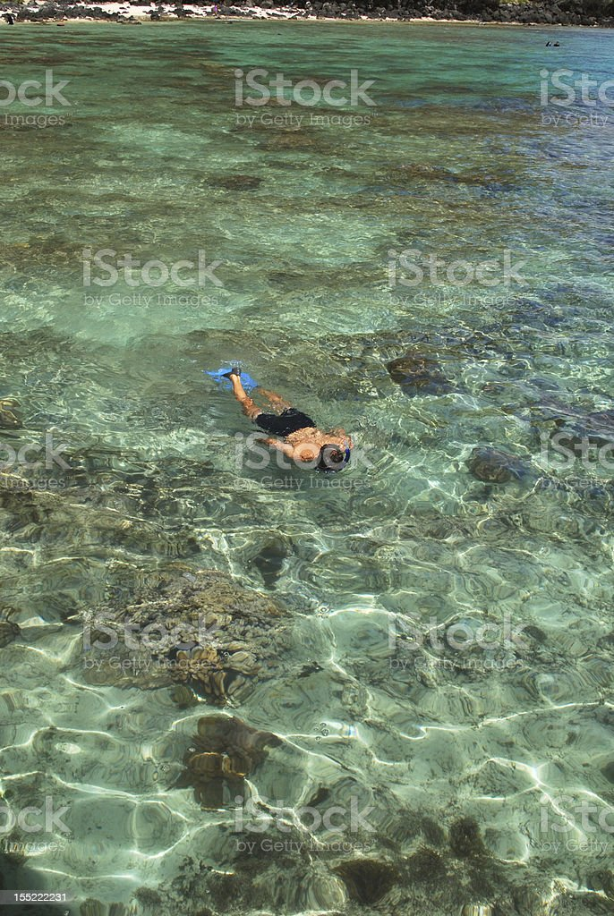 Snorkeling at Crystal Clear Waters of Hawaii stock photo