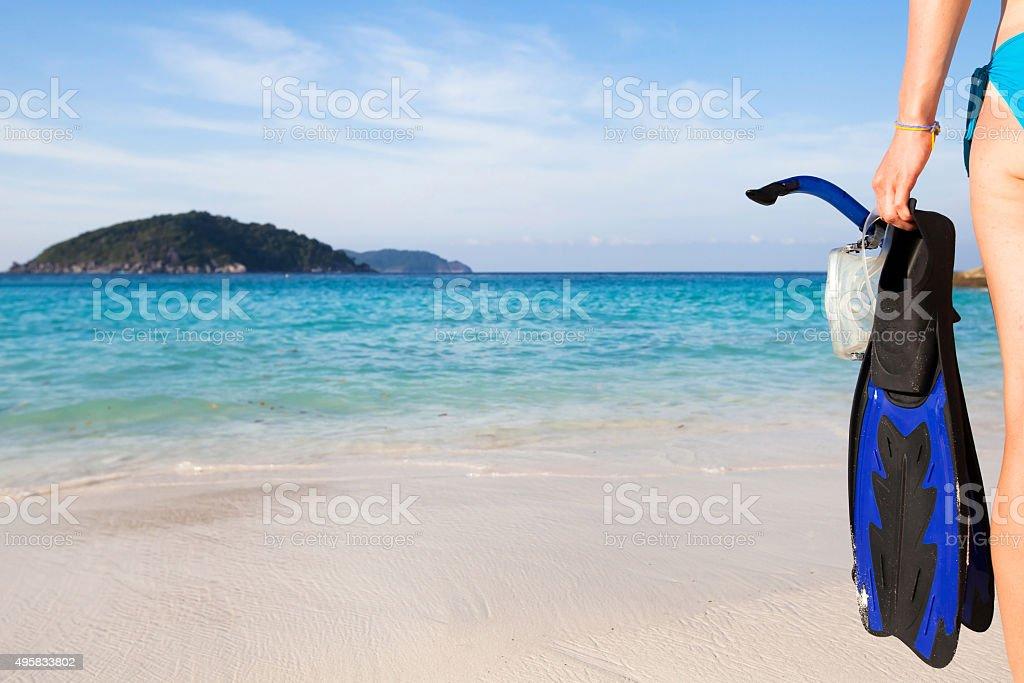 snorkeling background stock photo