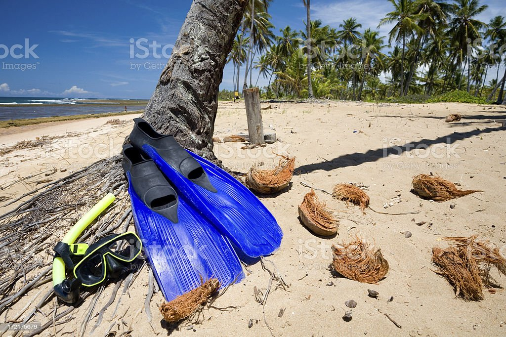 Snorkeling gear on a beach royalty-free stock photo