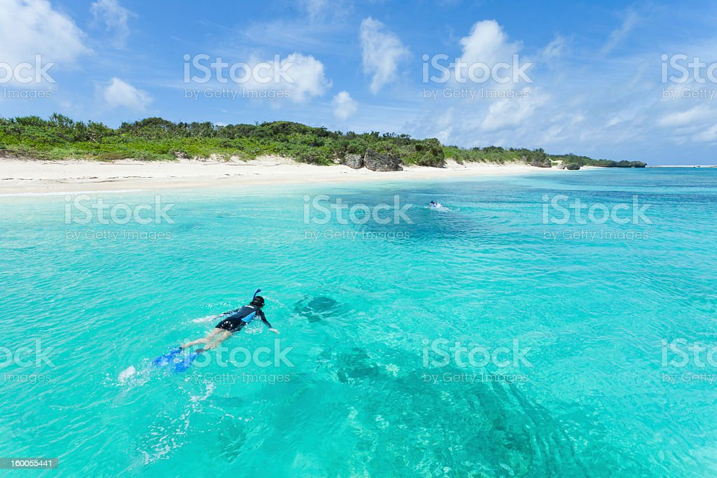 Snorkeling in clear blue water of tropical island, Okinawa, Japan stock photo