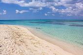 Snorkeling in Dry Tortugas