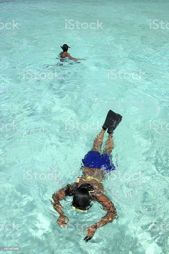 Snorkeling In the Caymans 1 royalty-free stock photo