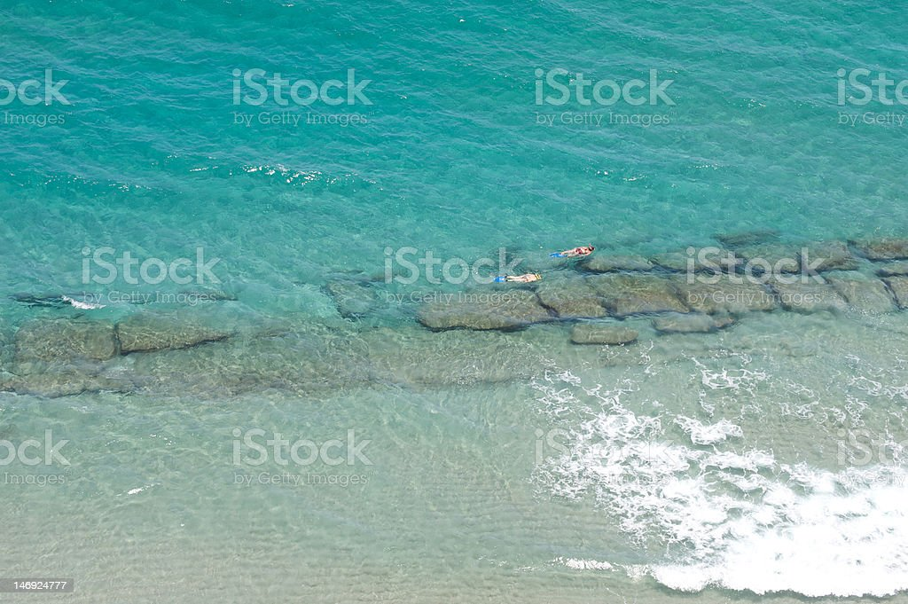 Snorkeling in the ocean royalty-free stock photo