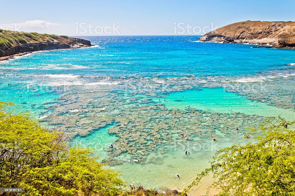 Snorkeling tropical paradise Hanauma bay in Oahu, Hawaii stock photo