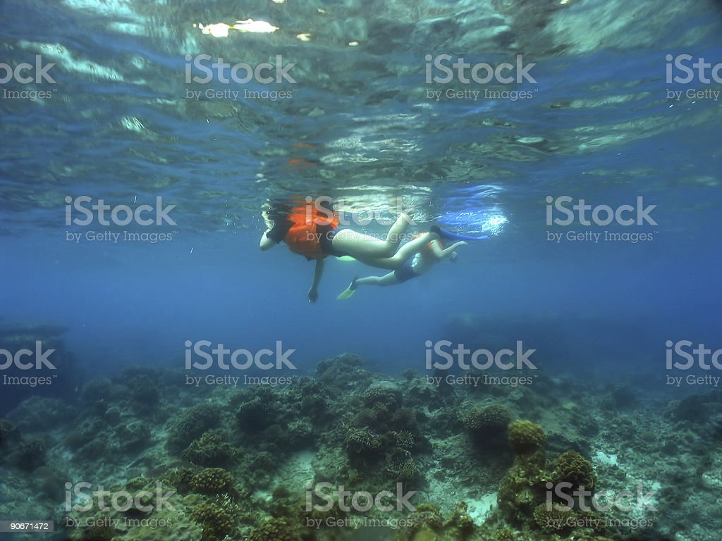 Snorkelling in crystal clear tropical ocean stock photo
