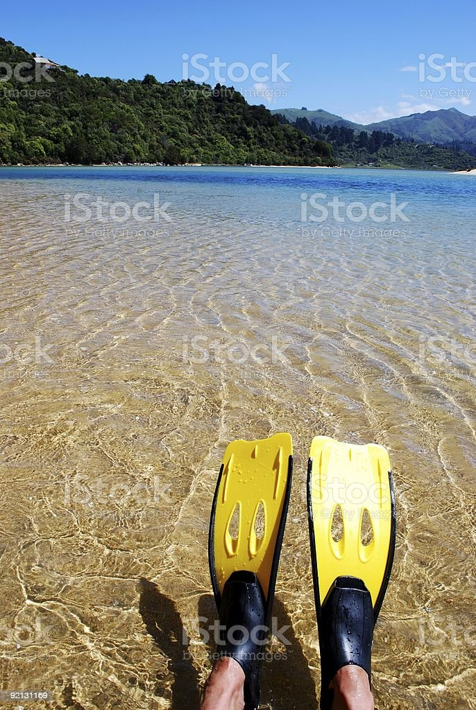 Snorkelling in the Abel Tasman stock photo