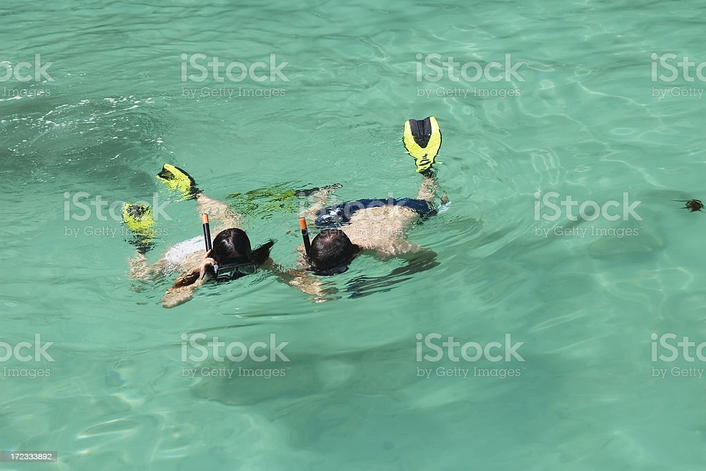 snorkelling royalty-free stock photo