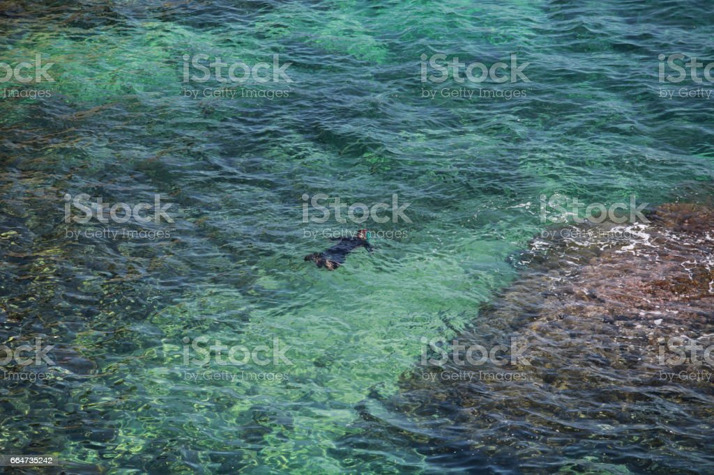snorkelling view from above stock photo