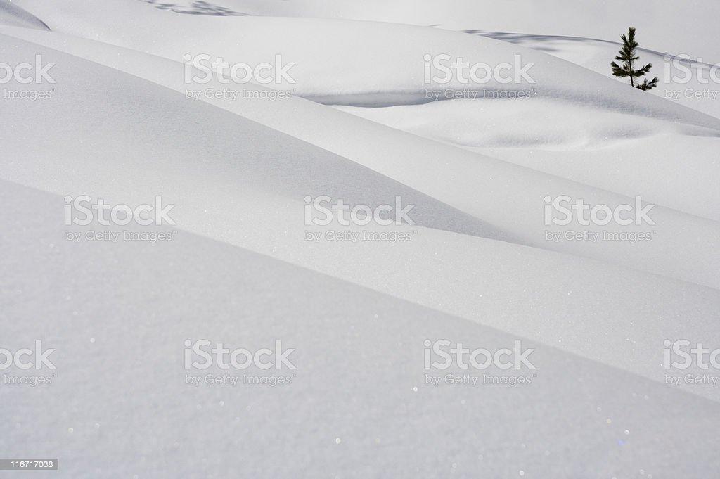 Snow Background royalty-free stock photo