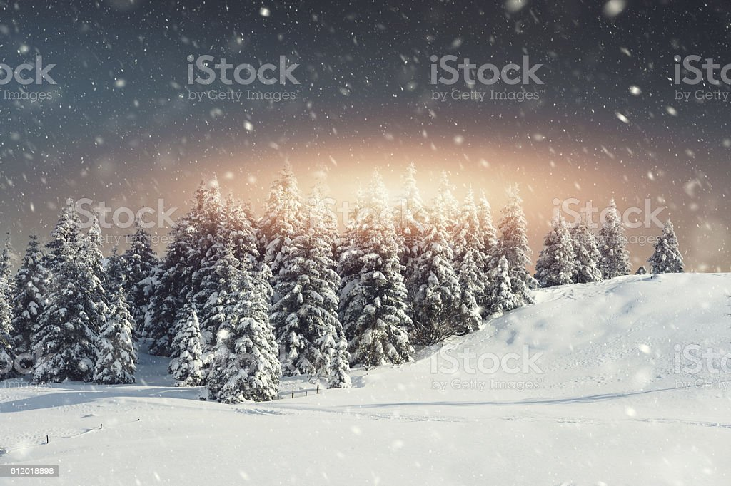 Snow blizzard and the sunrise stock photo