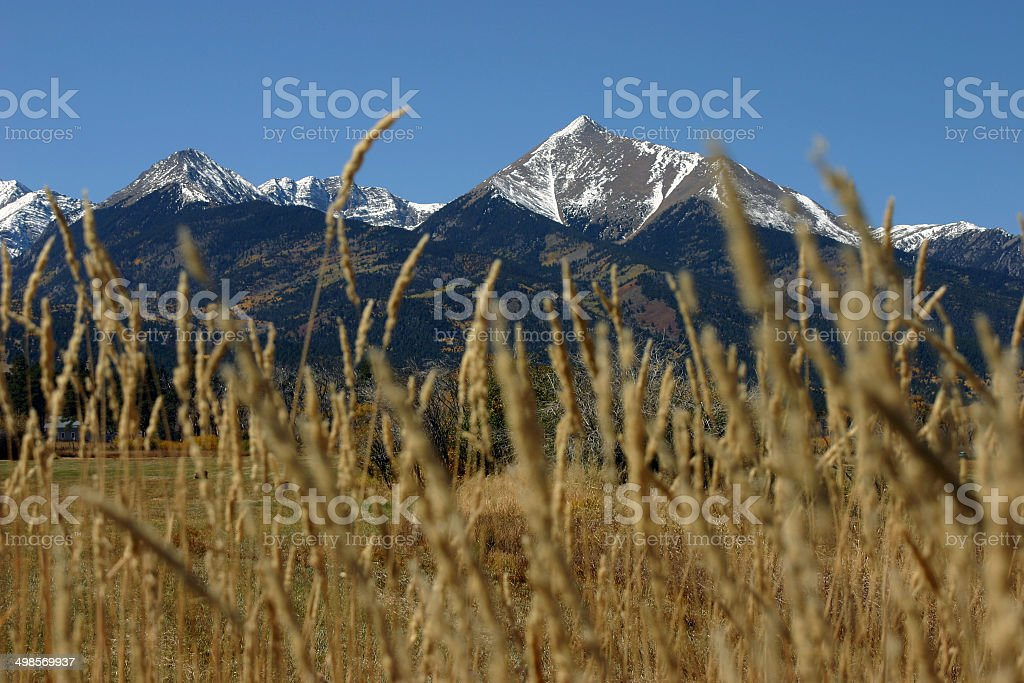 Snow capped Colorado rocky mountains and grain stock photo