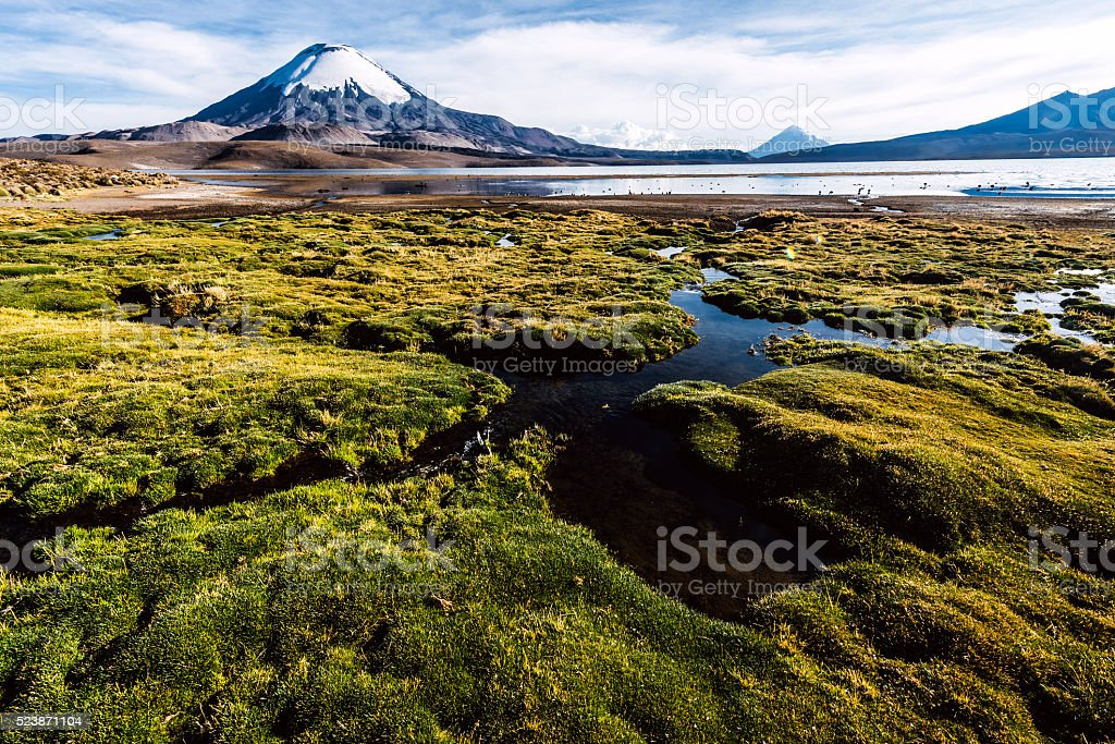 Snow capped Parinacota Volcano, Lauca-Atacama region, Chile stock photo