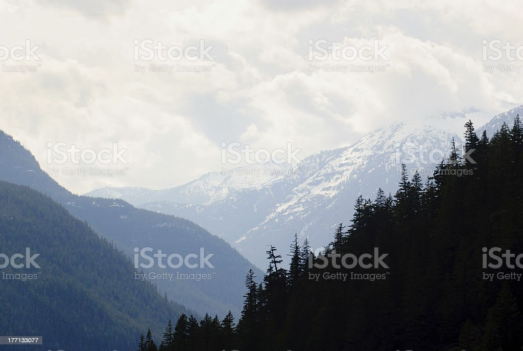 snow capped peaks and forest royalty-free stock photo