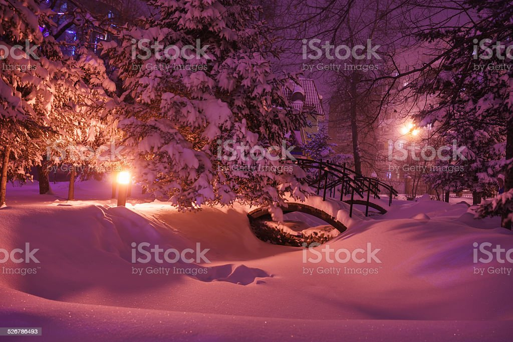 Snow covered arch bridges in the park stock photo