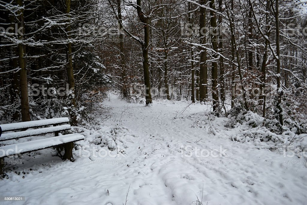 Snow covered bench and path stock photo
