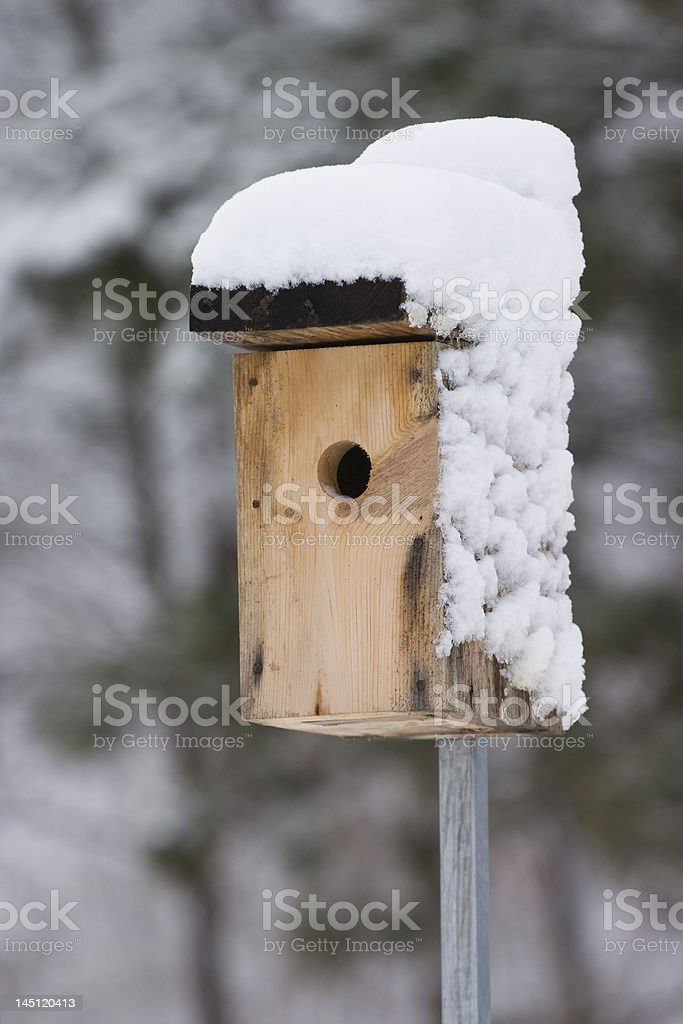 snow covered bird house royalty-free stock photo