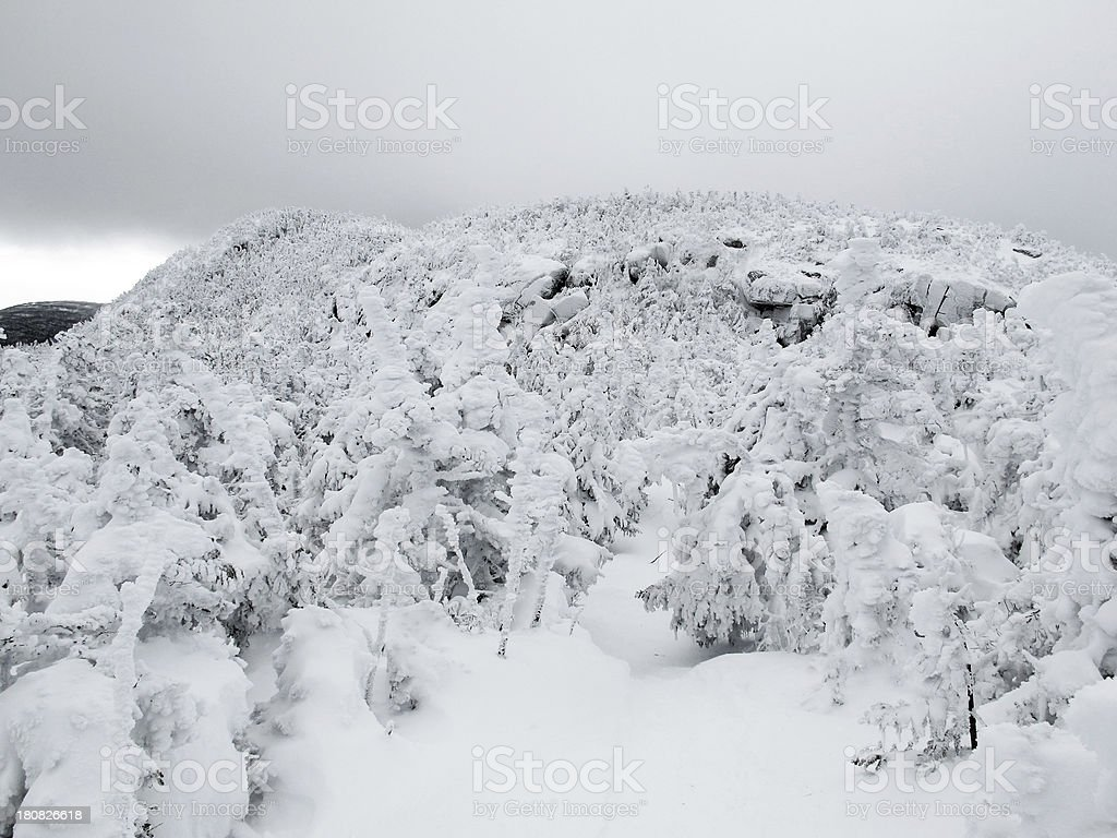 Snow Covered Carter Range stock photo