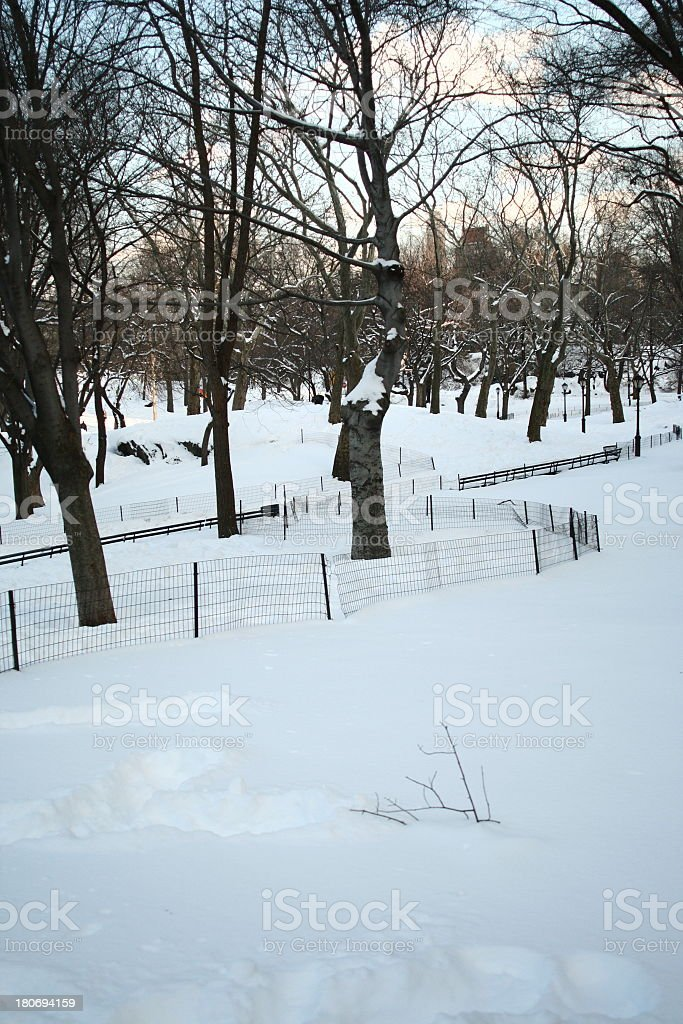 Snow Covered Central Park royalty-free stock photo