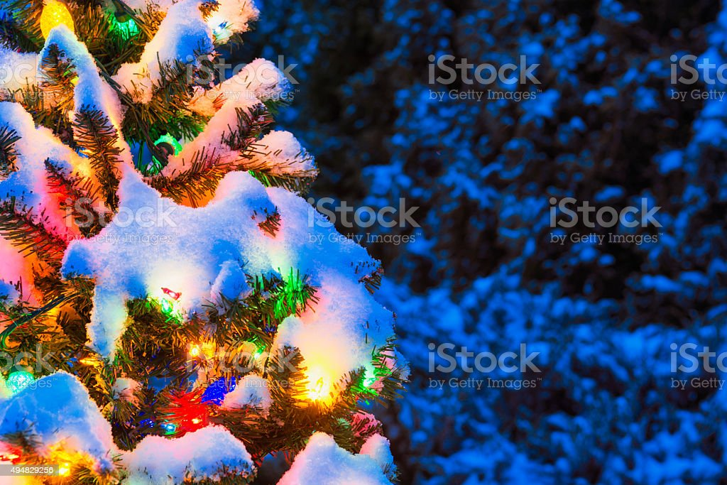 Snow covered Christmas tree at night with multi-colored lights stock photo