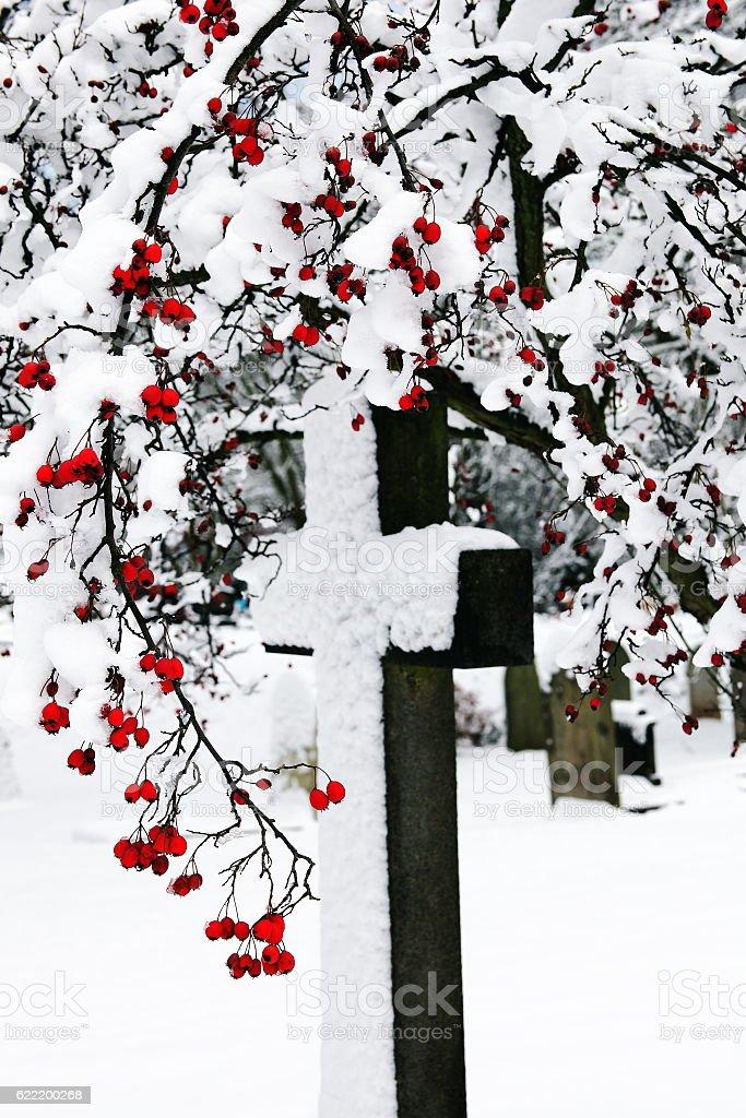 Snow covered cross stock photo
