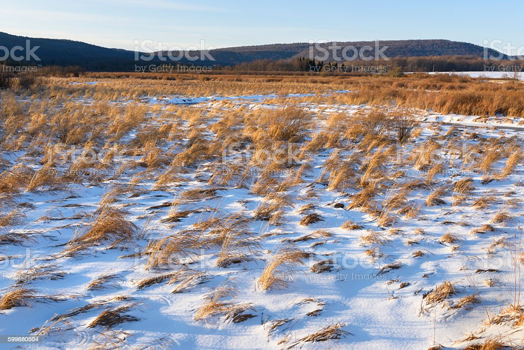 Snow Covered Field in Winter stock photo