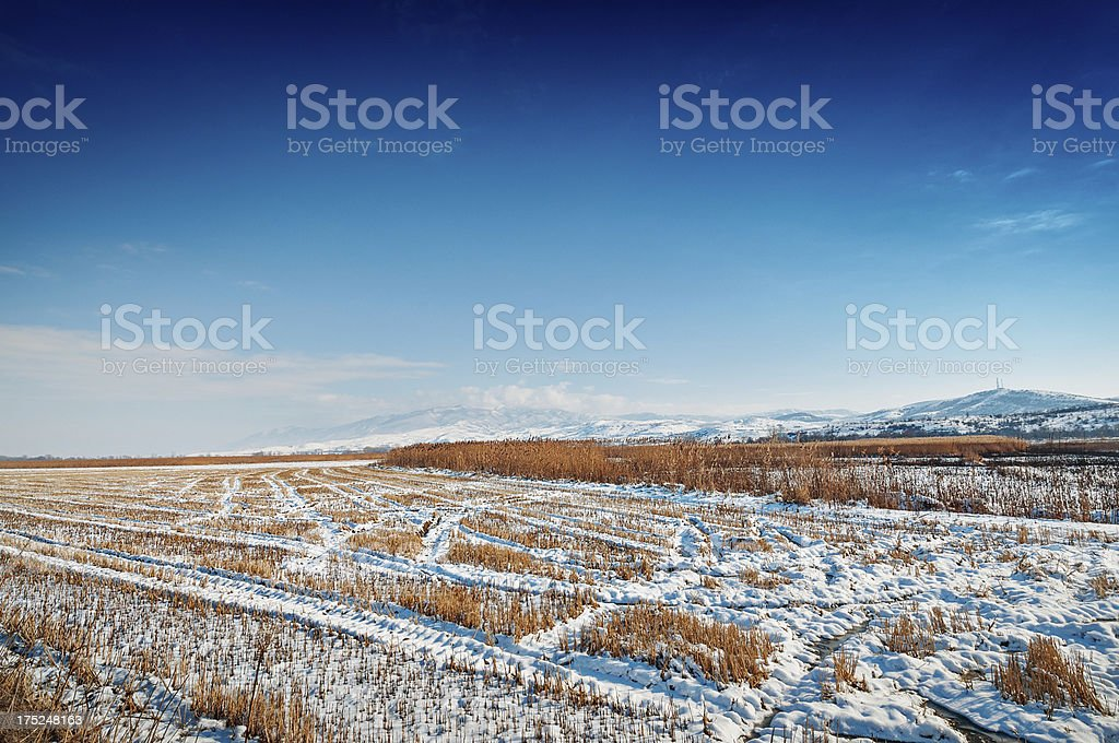 Snow Covered Fileds and Snowy Mountains in Background royalty-free stock photo