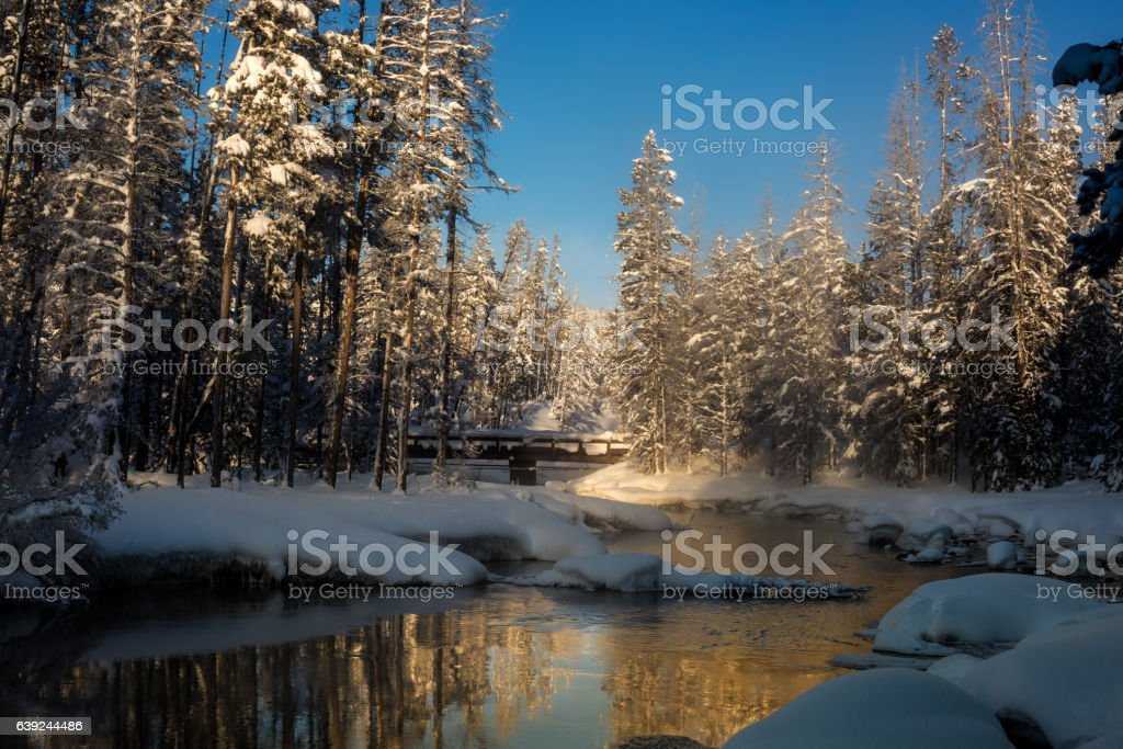 Snow covered forest in winter with a wood bridge stock photo