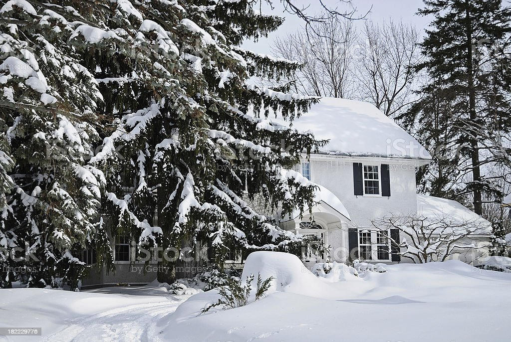 Snow covered house and fir trees stock photo