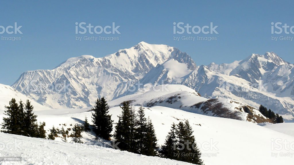 Snow covered Mont Blanc in Swiss Alps with trees in front  stock photo