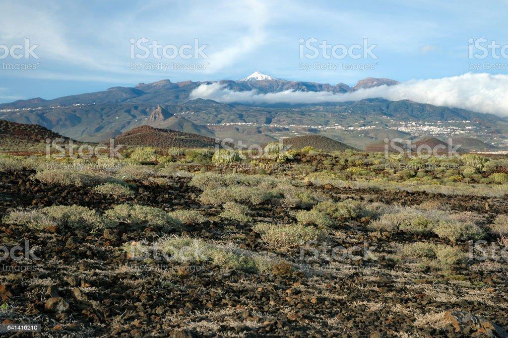 Snow covered Mount Teide in Tenerife stock photo