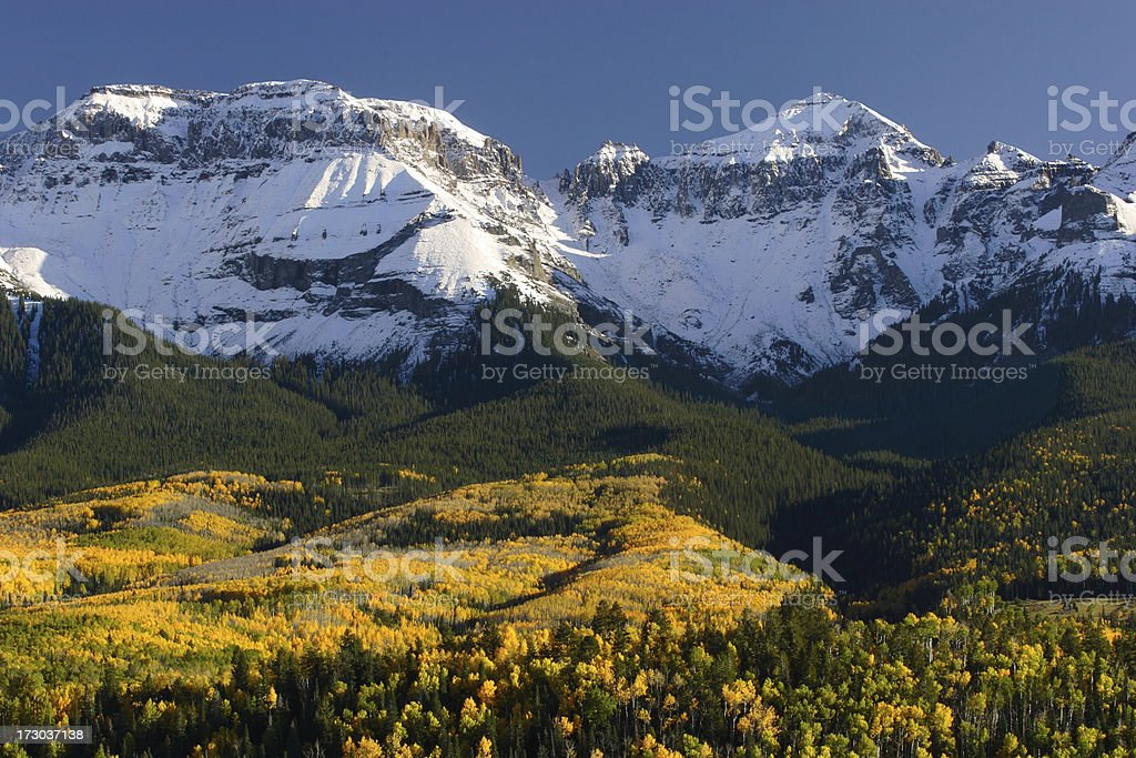 Snow Covered Mountain Peaks and Autumn Aspen royalty-free stock photo