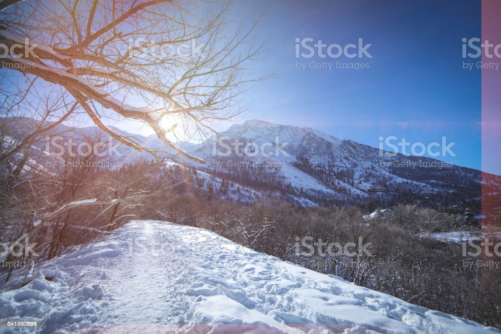Snow covered mountain top with trail stock photo