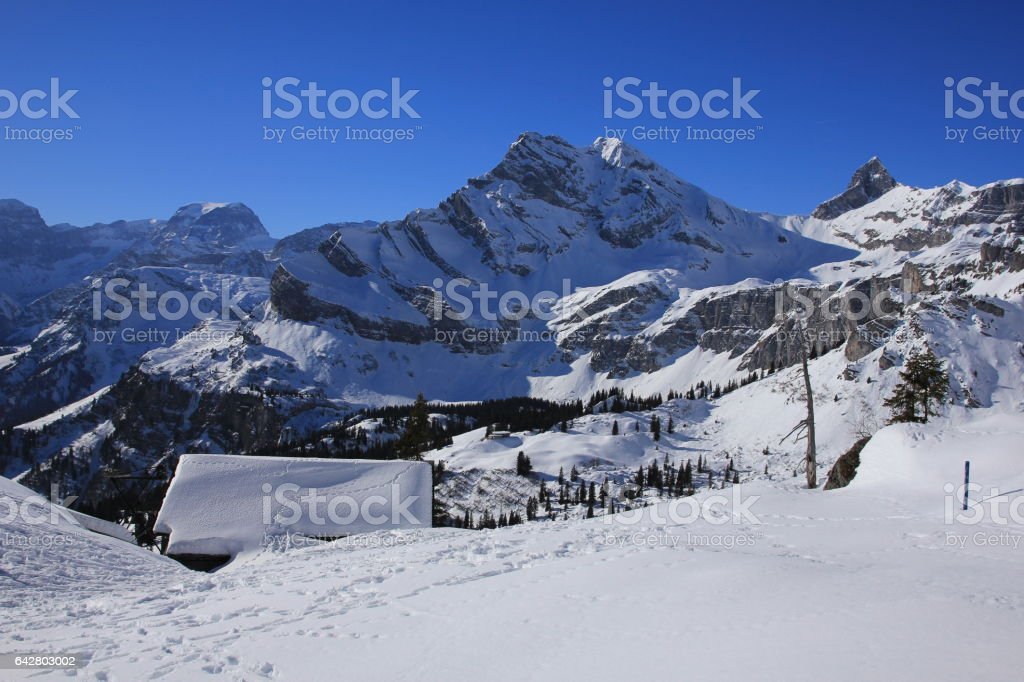 Snow covered mountains Todi, Ortstock and Hoch Turm. stock photo