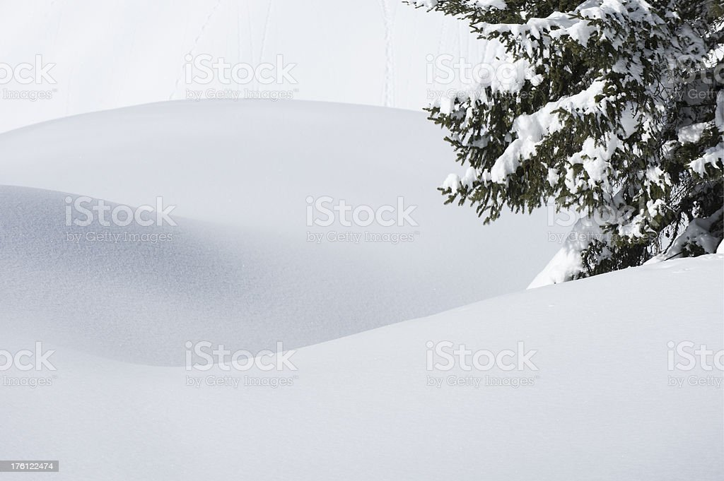 Snow covered stock photo