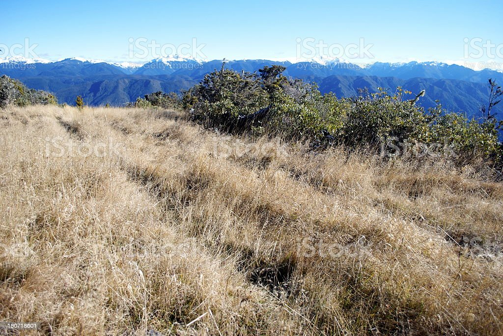 Snow Covered Ranges, The Kahurangi National Park, New Zealand royalty-free stock photo