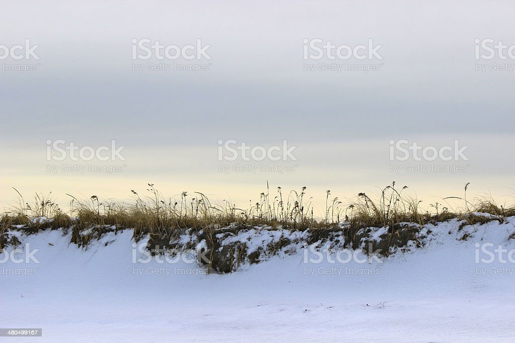Snow Covered Sand Dunes in Winter stock photo