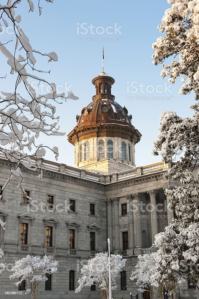 Snow Covered Trees at the South Carolina State House royalty-free stock photo