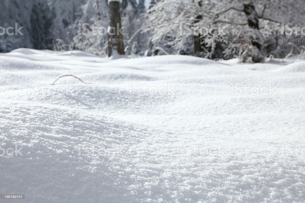 Snow covers the landscape foreground and trees behind royalty-free stock photo