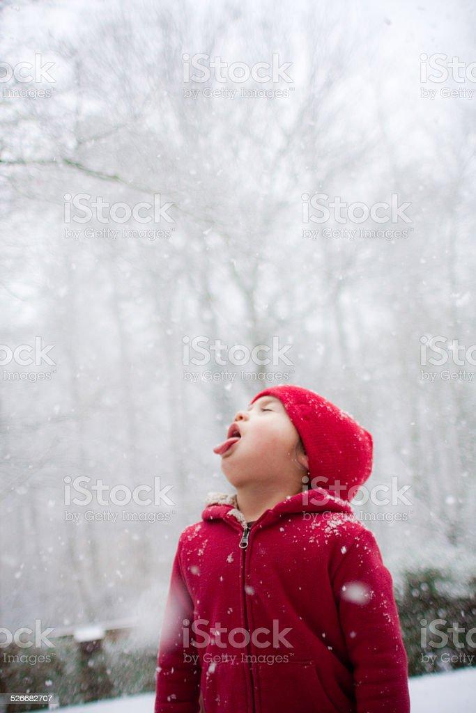 Snow Day stock photo